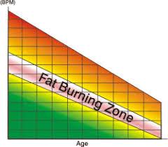 fat zone